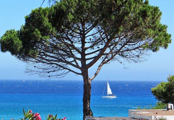 location appartement sant ambroggio Haute Corse vue sur la mer