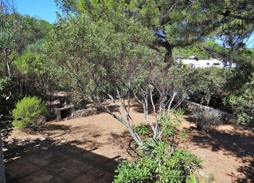 Sant ambroggio location de villa en Haute Corse