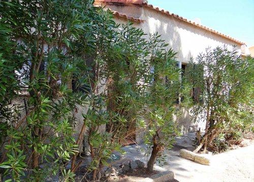 location villa en haute corse entre calvi et île rousse chez Sant ambroggio